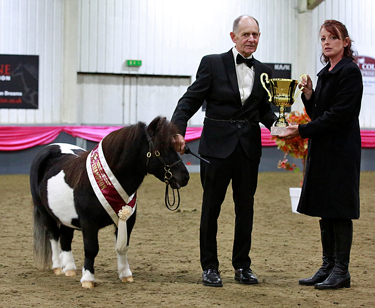 IMHPS Show: Supreme Shetland of the year for Spectre.