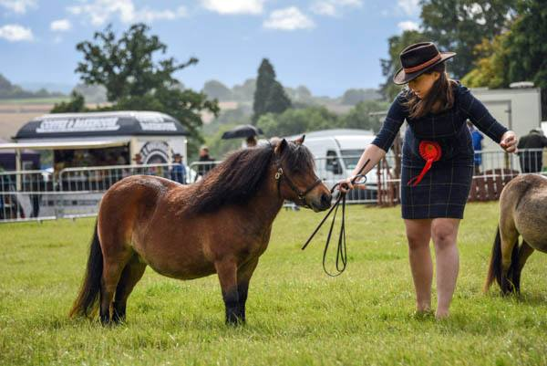 Kington Agricultural show: Some much needed help in more ways than one.